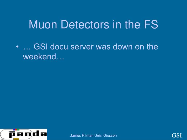 Muon Detectors in the FS