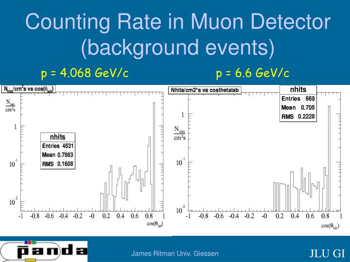 Counting Rate in Muon Detector