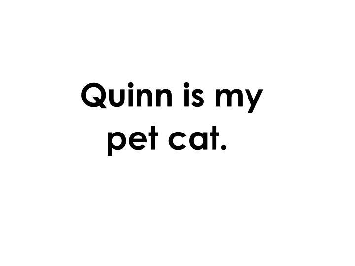 Quinn is my