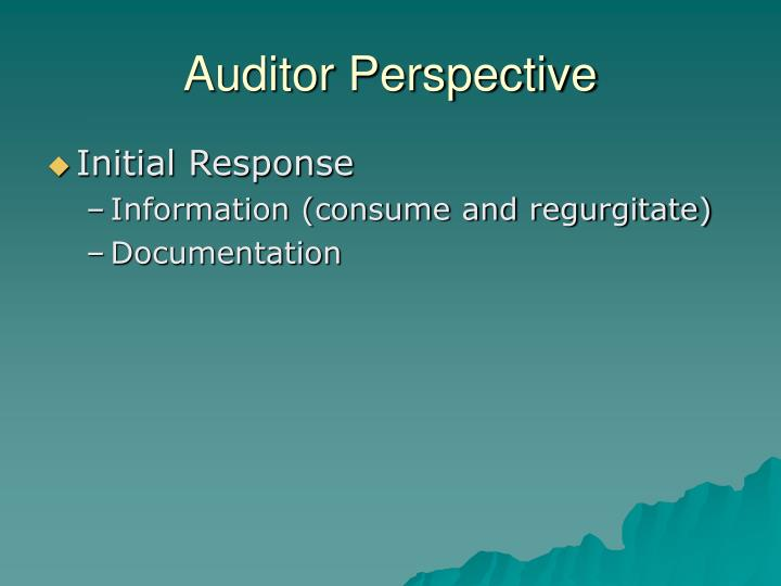 Auditor Perspective