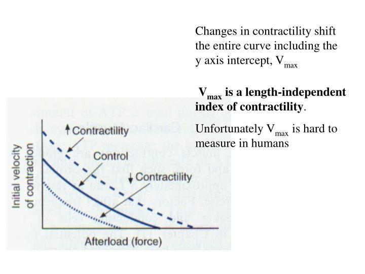 Changes in contractility shift the entire curve including the y axis intercept, V