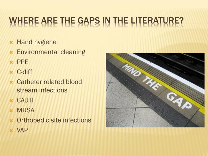 Where are the gaps in the literature?
