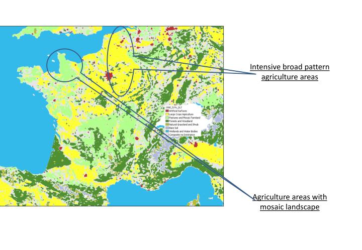 Intensive broad pattern  agriculture areas