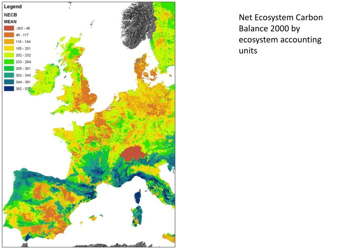 Net Ecosystem Carbon Balance 2000 by ecosystem accounting units