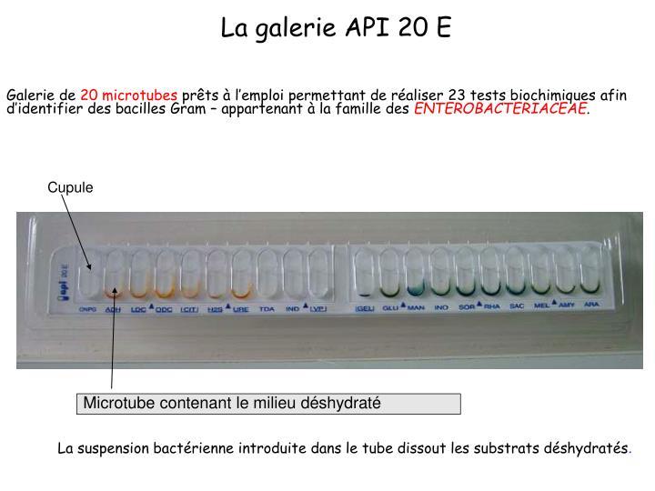 La galerie API 20 E