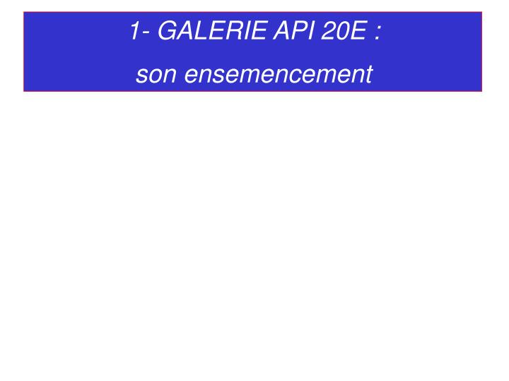 1- GALERIE API 20E :