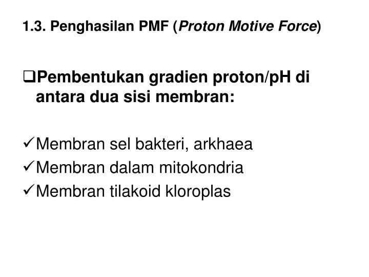 1.3. Penghasilan PMF (