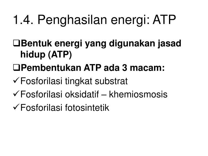 1.4. Penghasilan energi: ATP