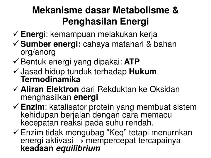 Mekanisme dasar Metabolisme & Penghasilan Energi