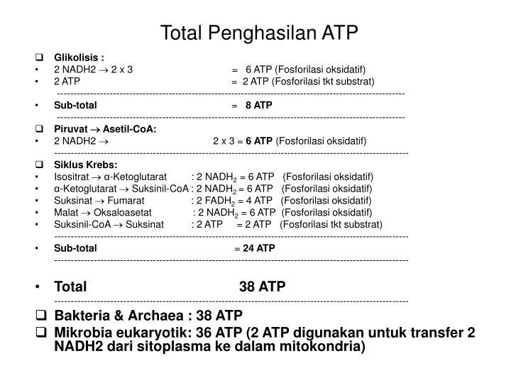 Total Penghasilan ATP