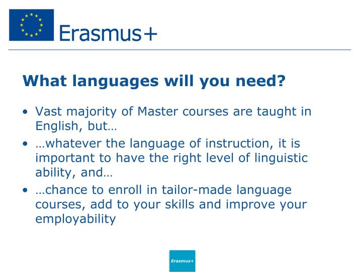 What languages will you need?