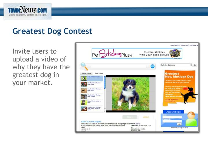 Greatest Dog Contest