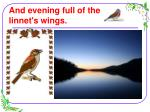 and evening full of the linnet s wings