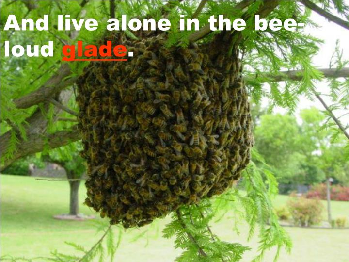 And live alone in the bee-loud