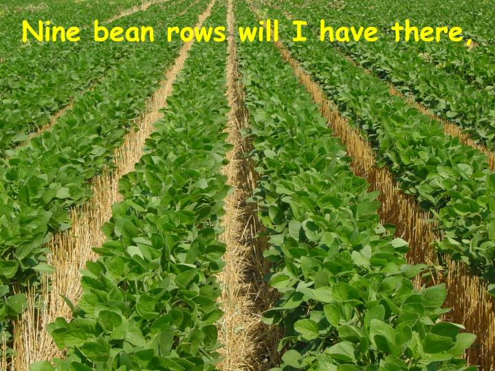 Nine bean rows will I have there,