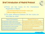 brief introduction of madrid protocol
