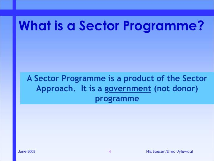 What is a Sector Programme?