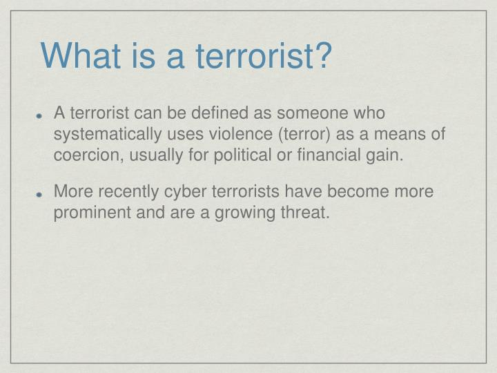 What is a terrorist?