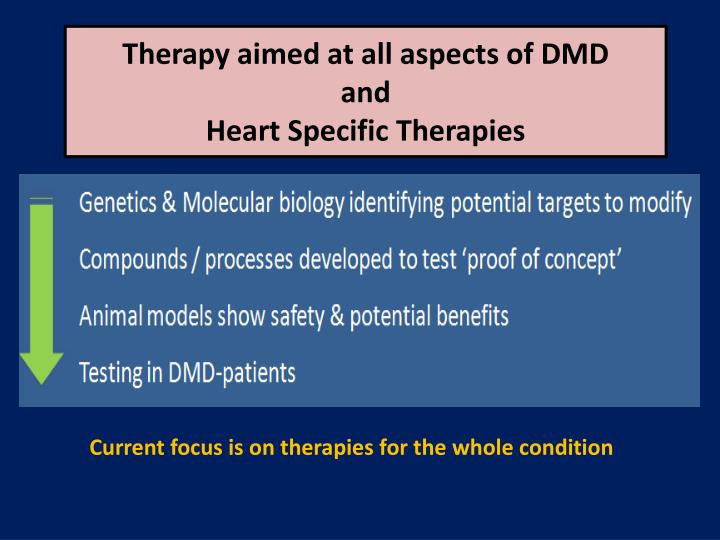 Therapy aimed at all aspects of DMD