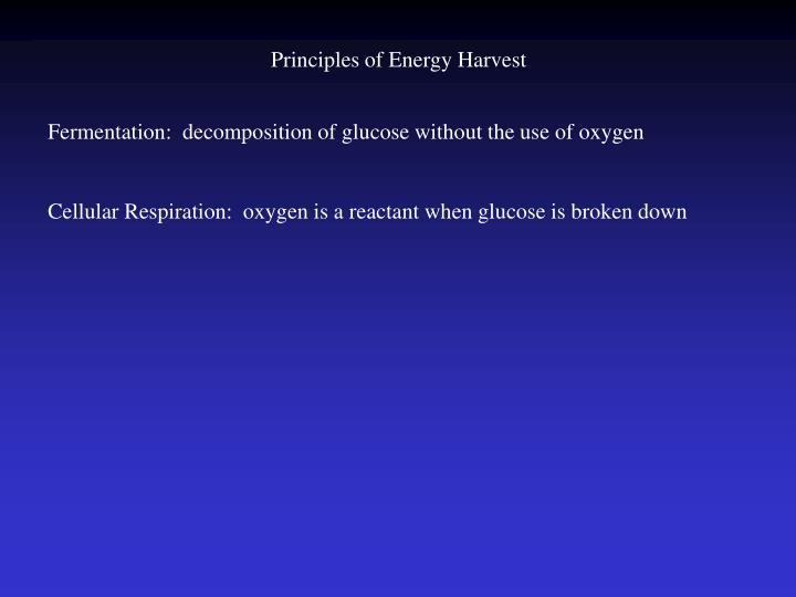 Principles of Energy Harvest