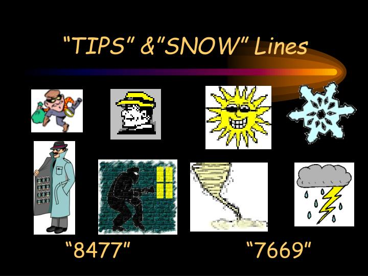 """""""TIPS"""" &""""SNOW"""" Lines"""