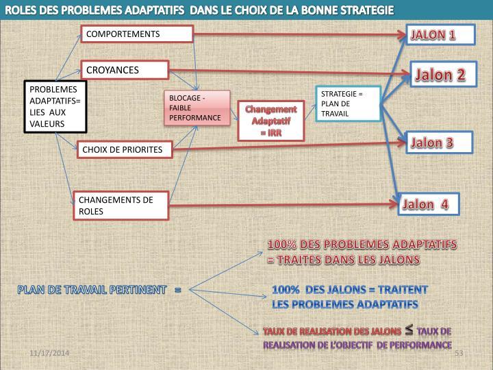 ROLES DES PROBLEMES ADAPTATIFS  DANS LE CHOIX DE LA BONNE STRATEGIE