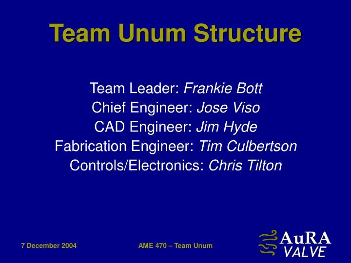Team Unum Structure
