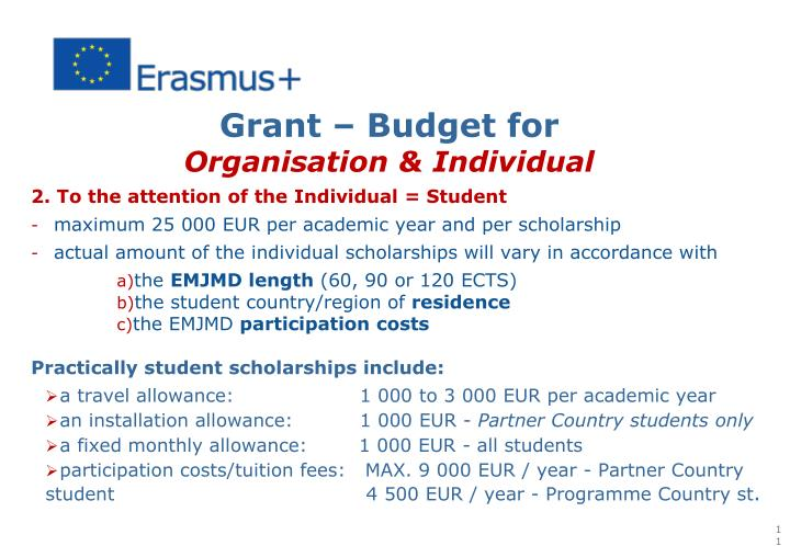 Grant – Budget for