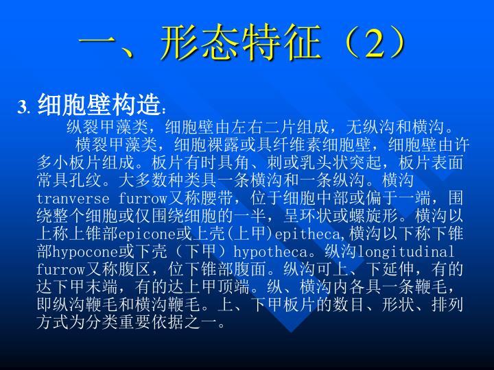 一、形态特征(2)