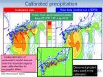 calibrated precipitation