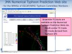 jma numerical typhoon prediction web site for the nmhss of escap wmo typhoon committee members