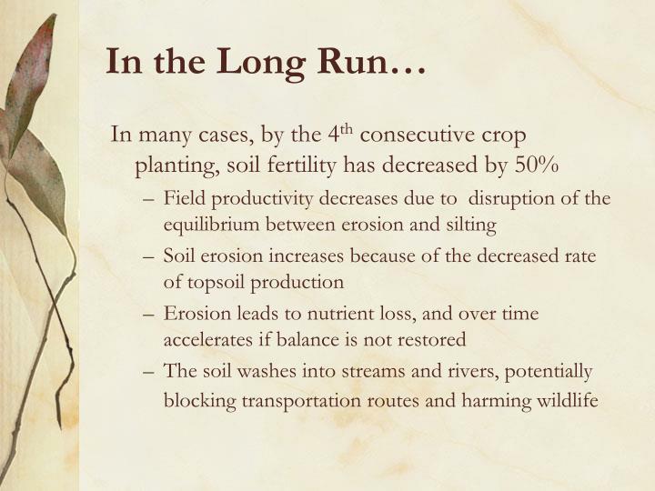 In the Long Run…