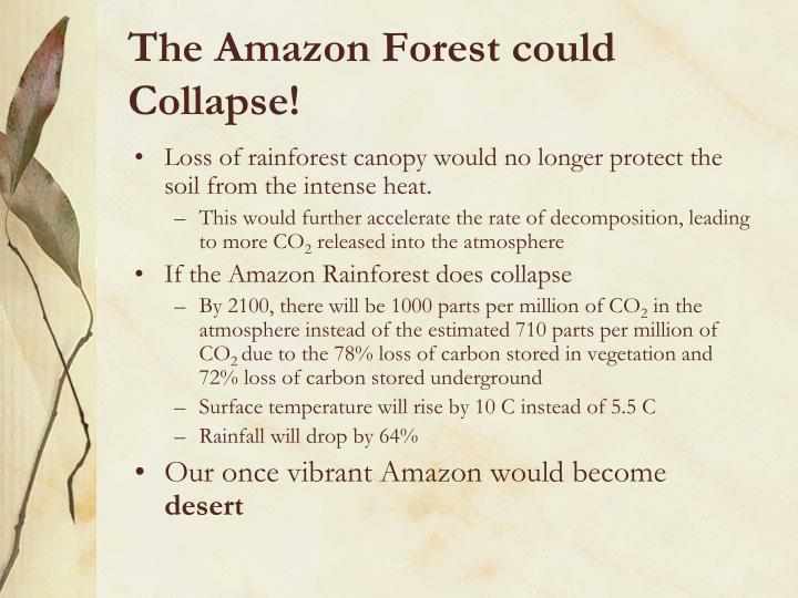 The Amazon Forest could Collapse!