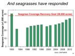 and seagrasses have responded