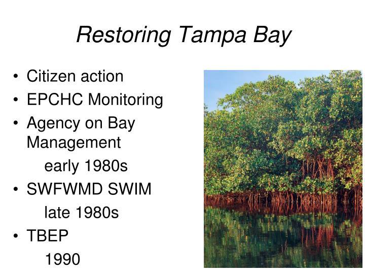 Restoring Tampa Bay
