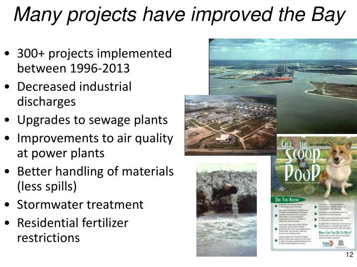 Many projects have improved the Bay