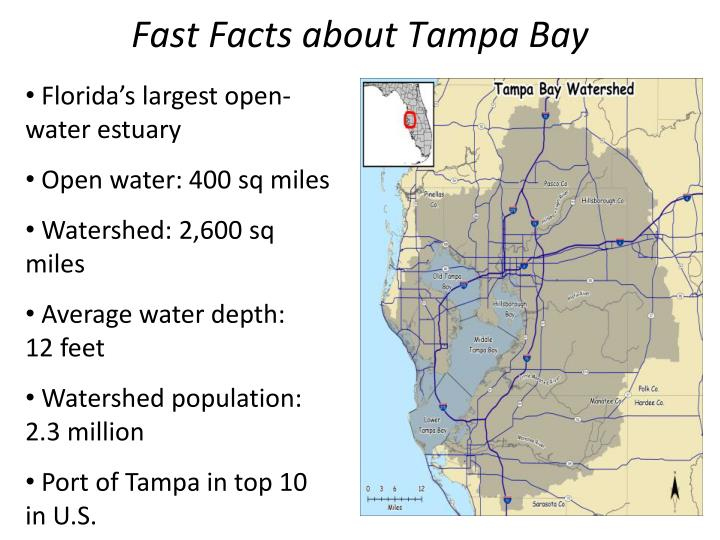 Fast Facts about Tampa Bay