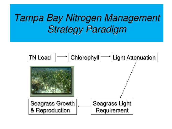 Tampa Bay Nitrogen Management Strategy Paradigm
