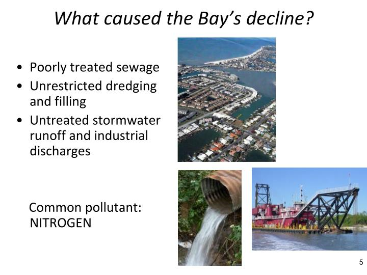 What caused the Bay's decline?