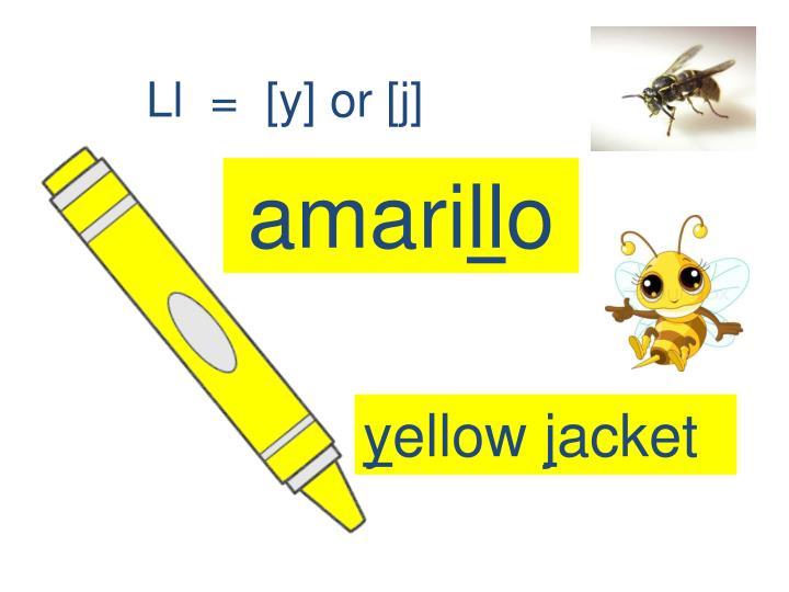 Ll  =  [y