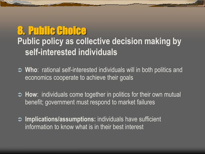 8.  Public Choice