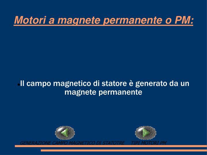 Il campo magnetico di statore è generato da un magnete permanente