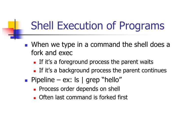 Shell Execution of Programs