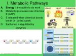 i metabolic pathways