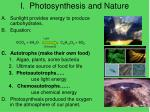 i photosynthesis and nature