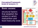 conceptual framework levels of analysis 1