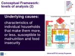 conceptual framework levels of analysis 2