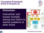 conceptual framework levels of analysis 4