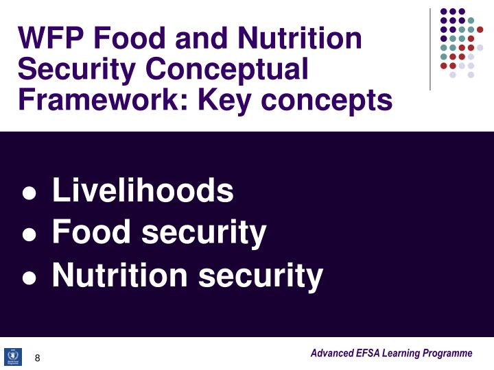 WFP Food and Nutrition Security Conceptual Framework: Key concepts