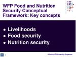 wfp food and nutrition security conceptual framework key concepts